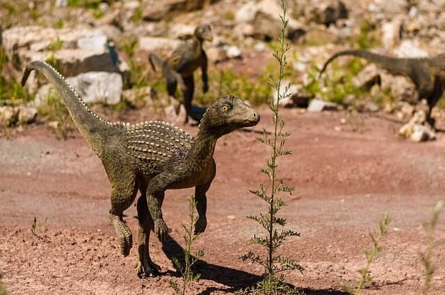 Des dinosaures dans la Bible ? Béhémoth, Léviathan, Dragon ?