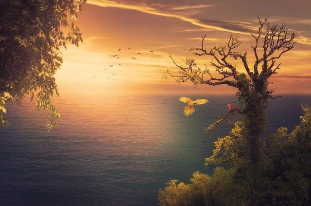 Le Paradis est-il Céleste ou Terrestre selon la Bible ? Quel est le véritable espoir des chrétiens ?