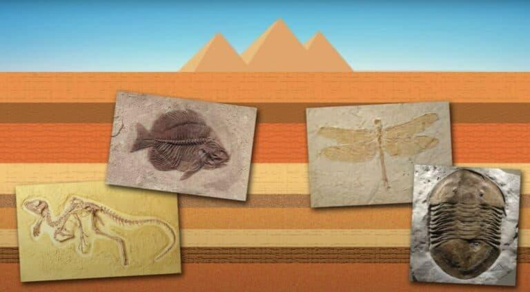Les pyramides ont-elles été construites avant le déluge ?