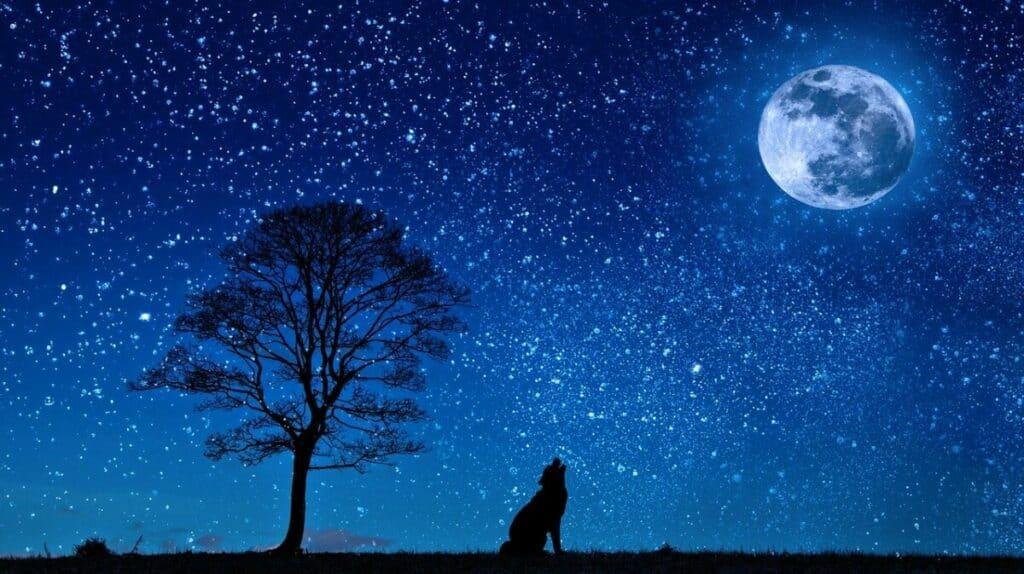 La lune et le dessein intelligent