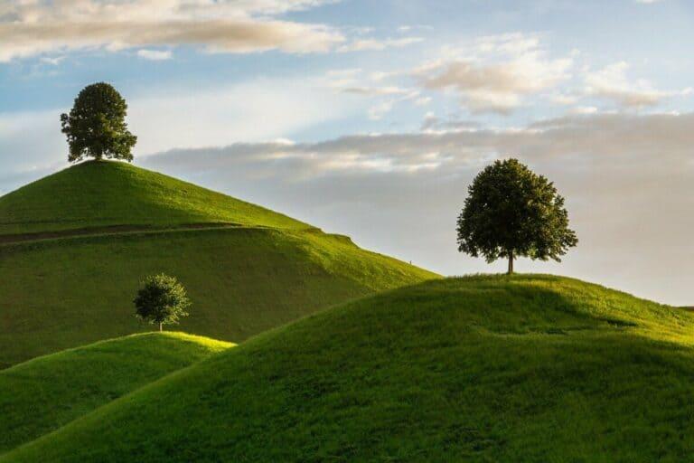 Quelle est la signification de l'Arbre de la Vie et de l'Arbre de la connaissance du Bien et du Mal ?