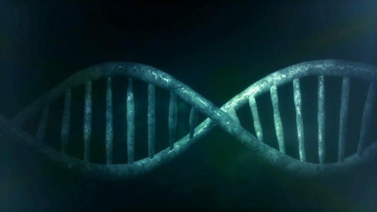 L'ADN est-il une preuve de l'existence du Créateur ?