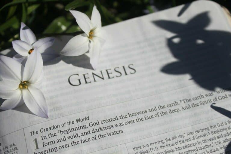 Y a-t-il deux récits différents et contradictoires de la création dans Genèse 1 et 2 ?